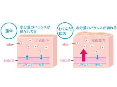 減塩より質が大切!むくみ改善&予防の塩の選び方 | home salon YUNO